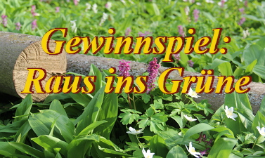 gewinnspiel_raus_ins_gruene