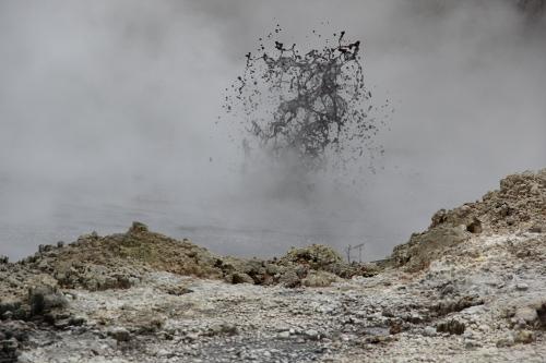 An den Steaming Cliffs fliegt einem der Schlamm sogar um die Ohren, naja, fast zumindest.