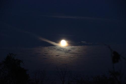 Über dem Weinberg schien der große, runde Mond. Dieses Bild entstand dank meines zweibeinigen, selbstlaufenden Stativs ;-)